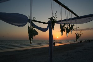 Sunset Wedding Arch On The Beach